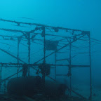 Mabul artificial reef