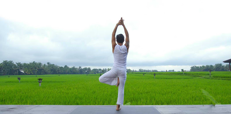 What To Do In Bali Ubud Bali Tourism Yoga