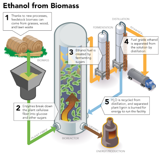 Ozone Improves Biofuel Production Efficiency Image