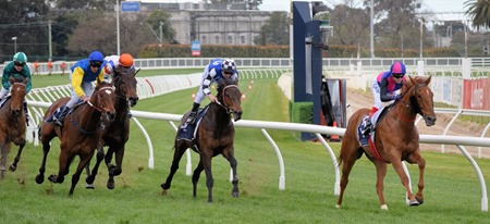 memsie stakes_finish 3