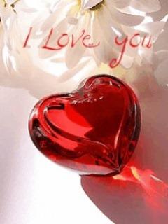 Love (9)