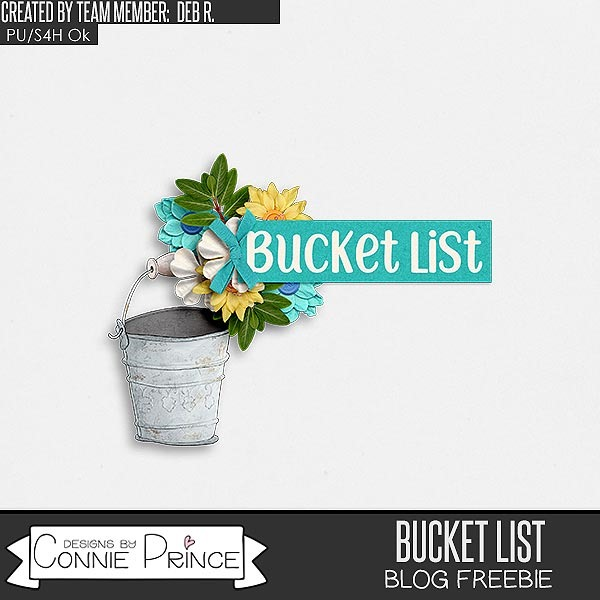 cap_DebR_BucketList_cl1_prev