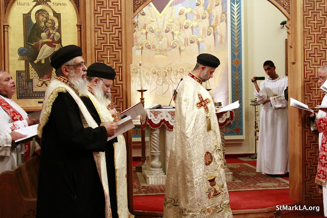 Rites of receiving Fr. Cyril Gorgy - _MG_1015.JPG