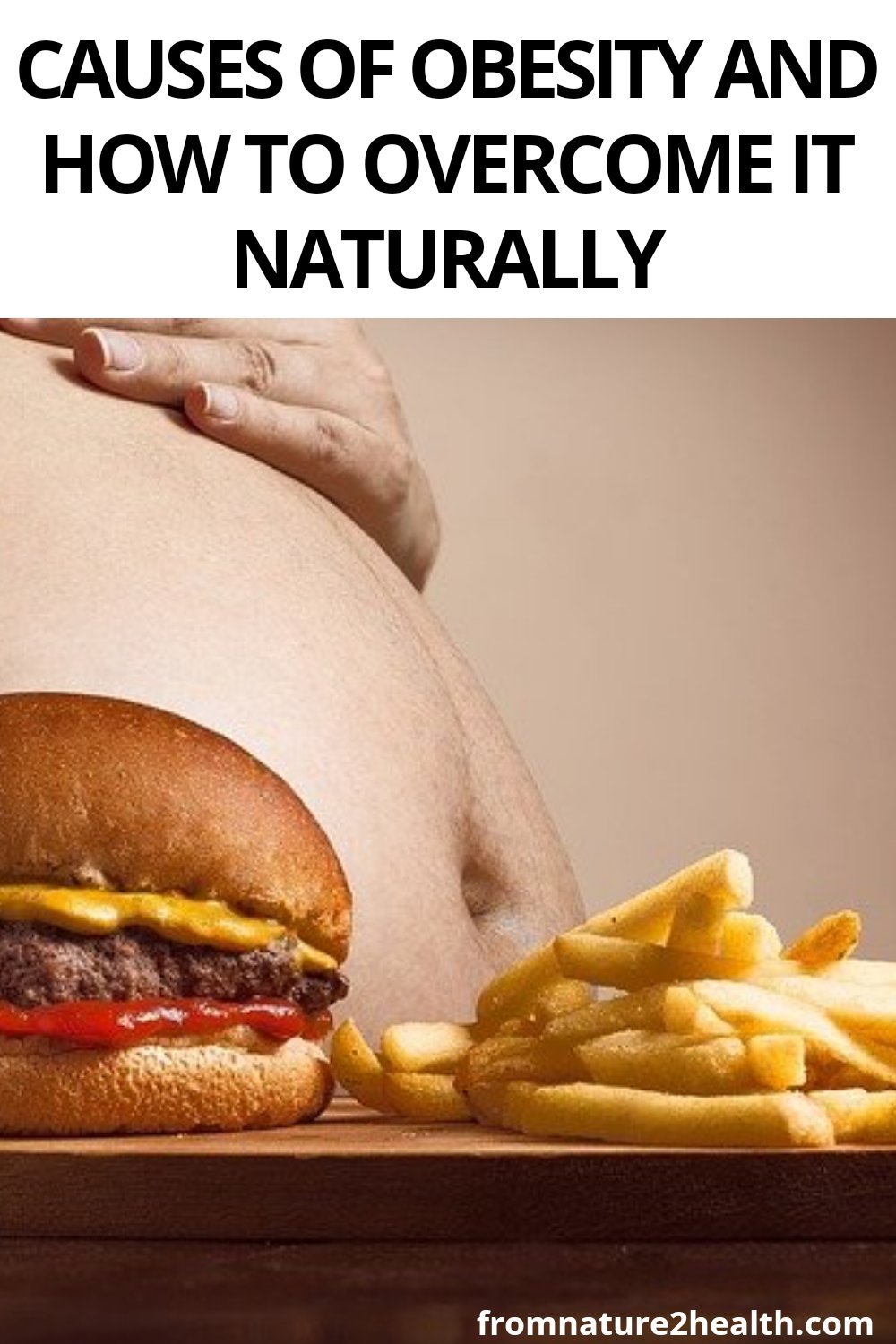 Causes of Obesity and How to Overcome It Naturally