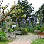 St-Vaast: les jardins de Tatihou