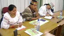 Grupo de Trabajo con Líderes Indígenas