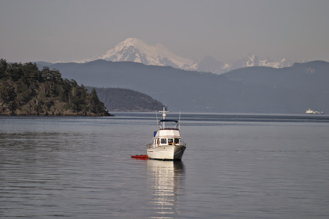 Boat with Mt Baker behindCredit: Peter James