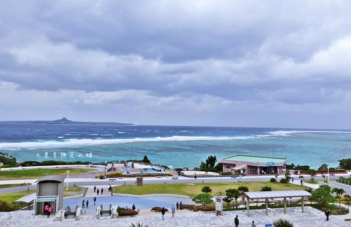 30 沖繩自由行 觀光巴士一日遊 推薦 美麗海家族服務號觀光巴士 Rado觀光巴士 美麗海水族館 琉宮城蝴蝶園 名護鳳梨園