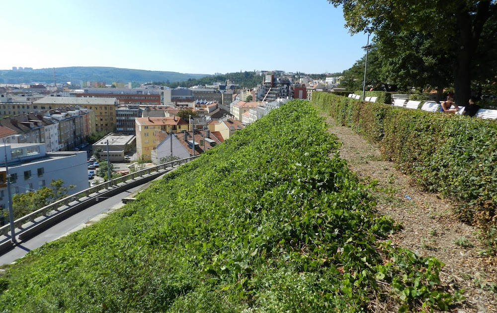 lovely city views on the walk up to the 'Katedrala'
