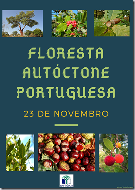 cartaz floresta