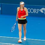 Maria Sharapova - 2016 Brisbane International -D3M_9595.jpg