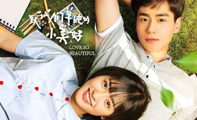 Todos os episódios de A Love So Beautiful online grátis dublado e legendado