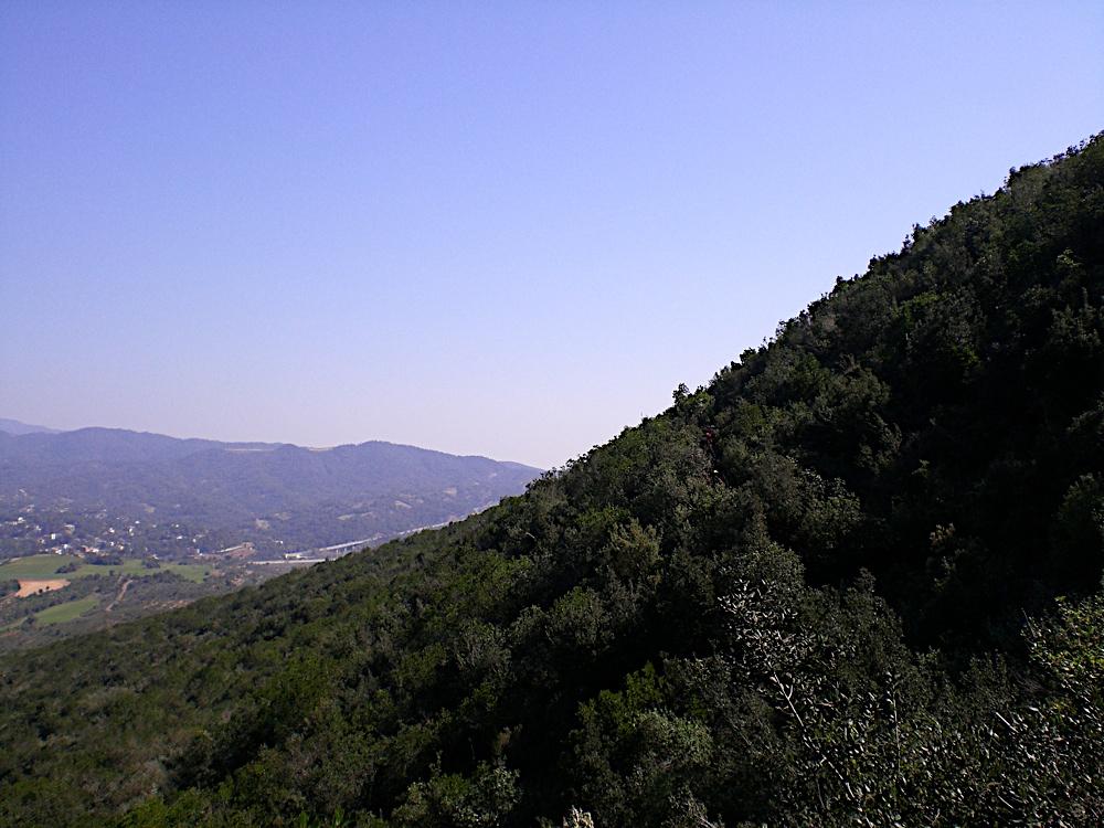 Sortida Sant Salvador de les espasses 2006 - CIMG8385.JPG