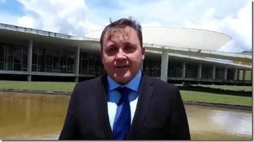 batata_brasilia