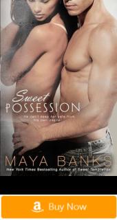 Sweet Possession - erotic romance novels