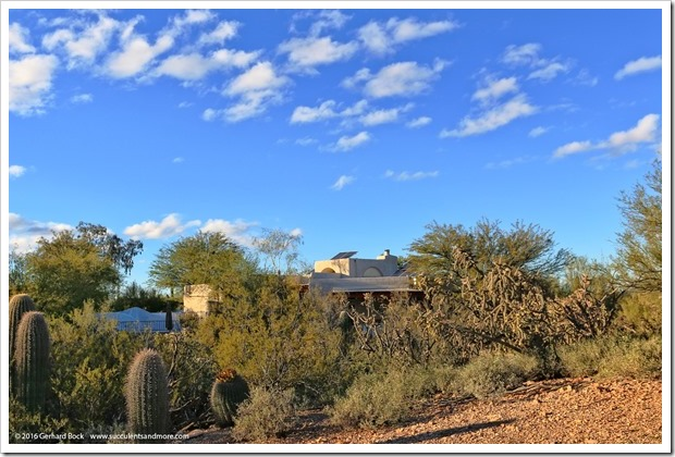 151229_Tucson_GregStarr_0091