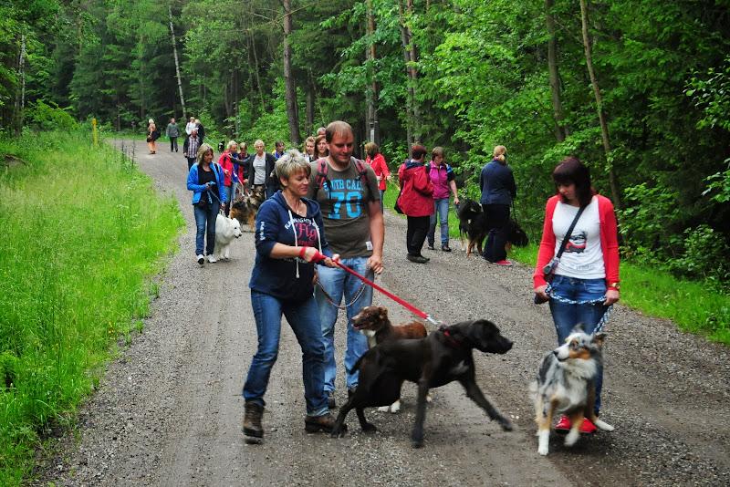 20130623 Erlebnisgruppe in Steinberger See (von Uwe Look) - DSC_3642.JPG