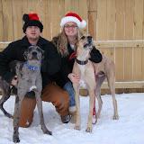 Dynamite Danes Family Album #2 - MY_DOGS_061.jpg