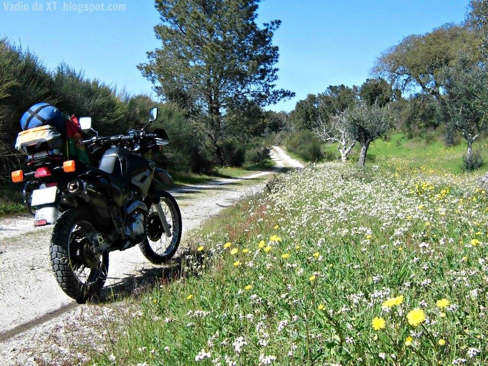 O meu... o teu... o nosso dia... (dia do Motociclista) Vale_de_gavioes_off_road