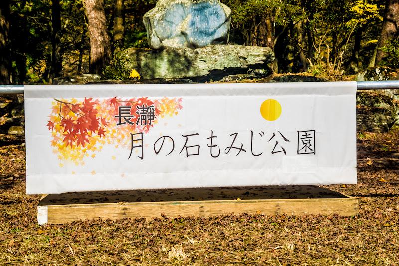 長瀞 月の石もみじ公園 紅葉1