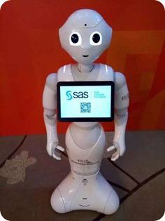 SAS Robot