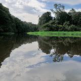 La Nyong et l'Île aux Perroquets. Ebogo (Cameroun), 29 avril 2013. Photo : Daniel Milan