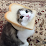 nico.'s profile photo
