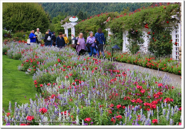 160906_Butchart_Gardens_0158