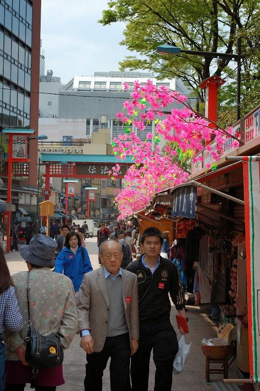 2014 Japan - Dag 11 - jordi-DSC_0966.JPG