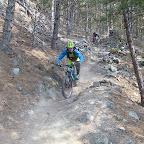 Piri Freeride jagdhof.bike (22).JPG