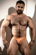 Muscled Furry Rough and Sexy Bears Hunks
