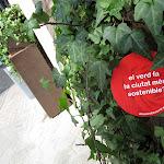 el verd fa la ciutat més sostenible_01.JPG
