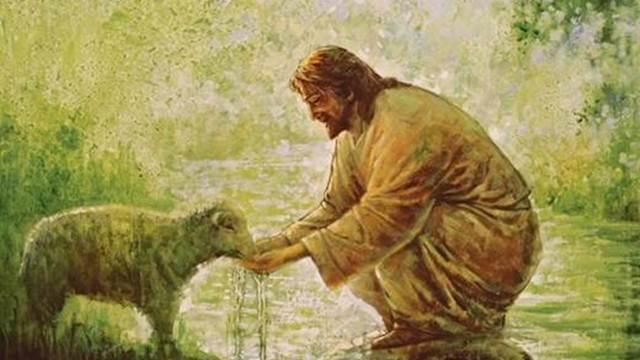 Tin Chúa vì lý do nào