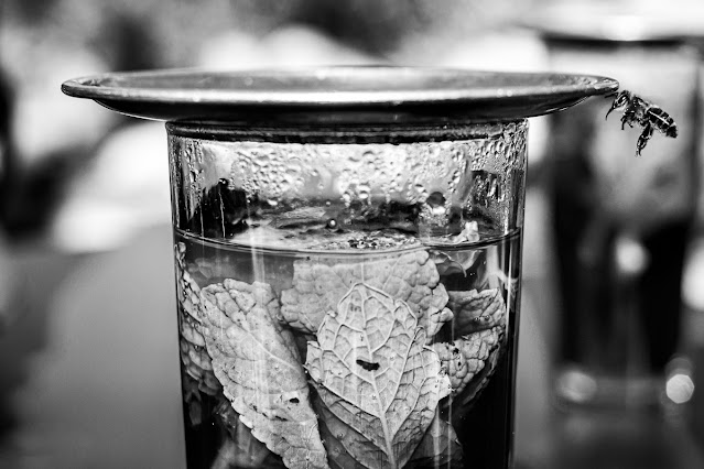 Blanco y negro desde el color, foto de Carlos Larios