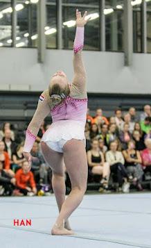 Han Balk Fantastic Gymnastics 2015-9508.jpg