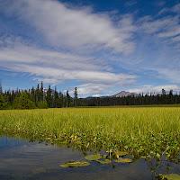 20110921_hosmer_lake_P9180528