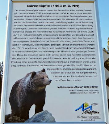 Schild letzter Bär am Kreuz des Bärenköpfle
