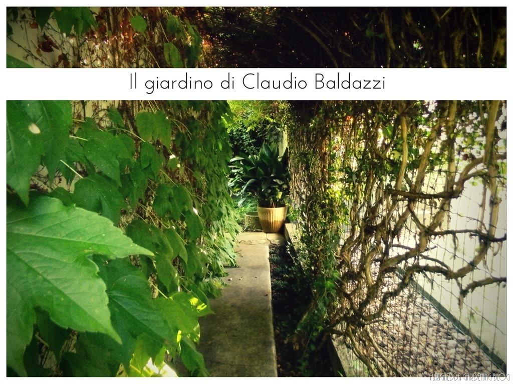[Il+giardino+di+Claudio+%2816%29%5B3%5D]