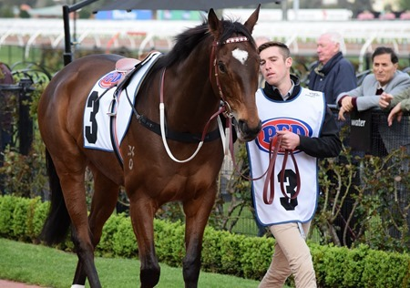 makybe diva_black heart bart 1