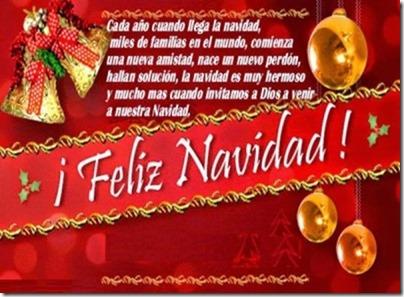 navidad (150)