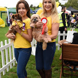OIC - ENTSIMAGES.COM - Pola Pospieszalska and Victoria Eisermann at the  PupAid Puppy Farm Awareness Day 2015 London 5th September 2015 Photo Mobis Photos/OIC 0203 174 1069