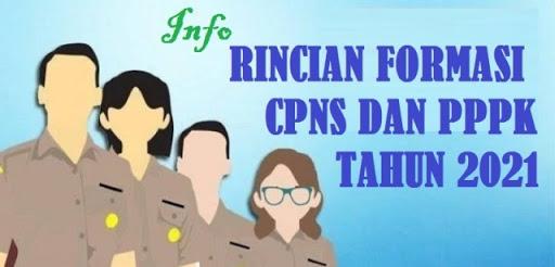 UPDATE INFO RINCIAN FORMASI CASN (CPNS DAN PPPK) TAHUN 2021