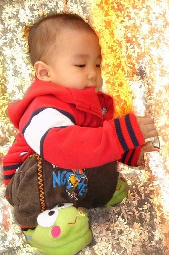 Pi Nhắng - Hoàng Gia Bách