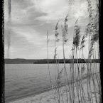 20120528-01-beach-b&w.jpg