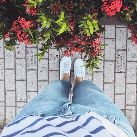 Life Lately | Work Your Closet