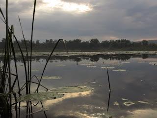 Petit lac pres de Nizhny Novgorod