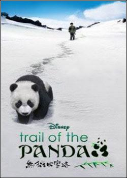 Baixar Filme Na Trilha do Panda (Dublado) Online Gratis