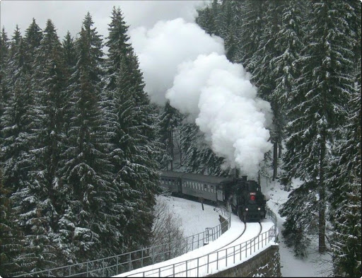 Photographic Train Trip in Winter (6).jpg