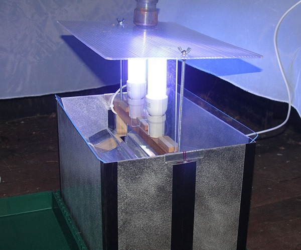 moth-trap-1