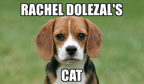 rachael dolezal's cat